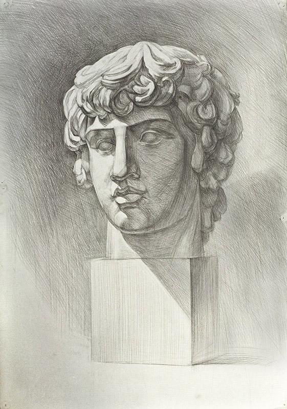 Рисунок гипсовой головы Антиной